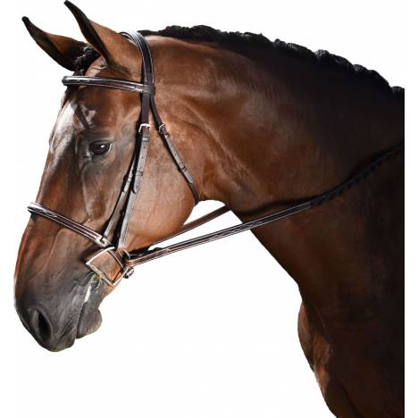 M. Toulouse Annice Hunter Bridle