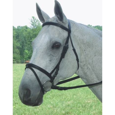 Collegiate Collection Padded Flash Bridle