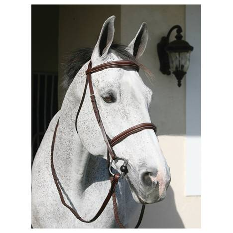 Henri De Rivel Pro Plain Raised Padded Bridle
