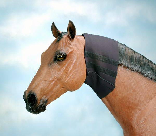 Tough-1 10'' Neoprene Neck Wrap