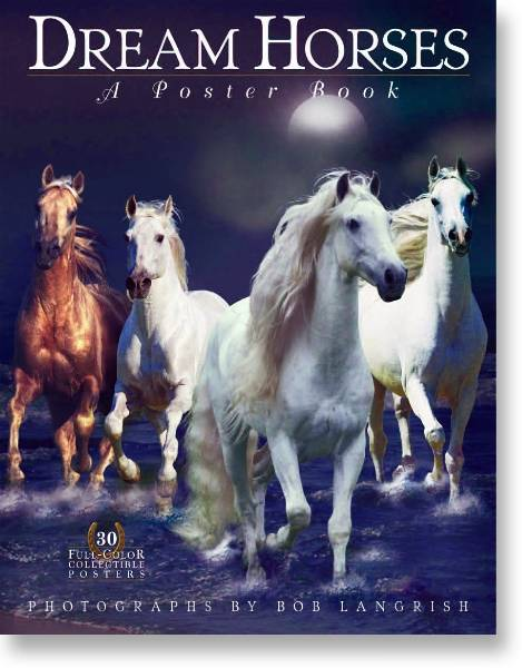 Dream Horses Poster Book