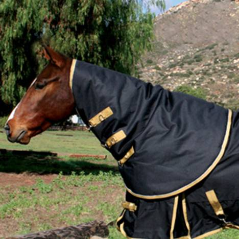 Professionals Choice Equisentials 600D Neck Cover