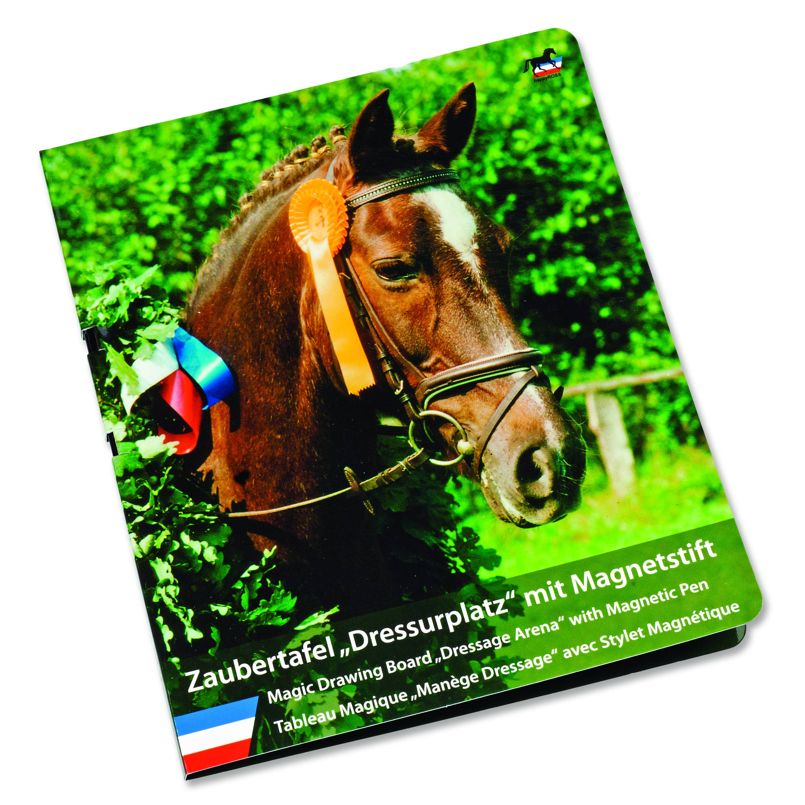 Kelley Magic Drawing Dressage Arena Board