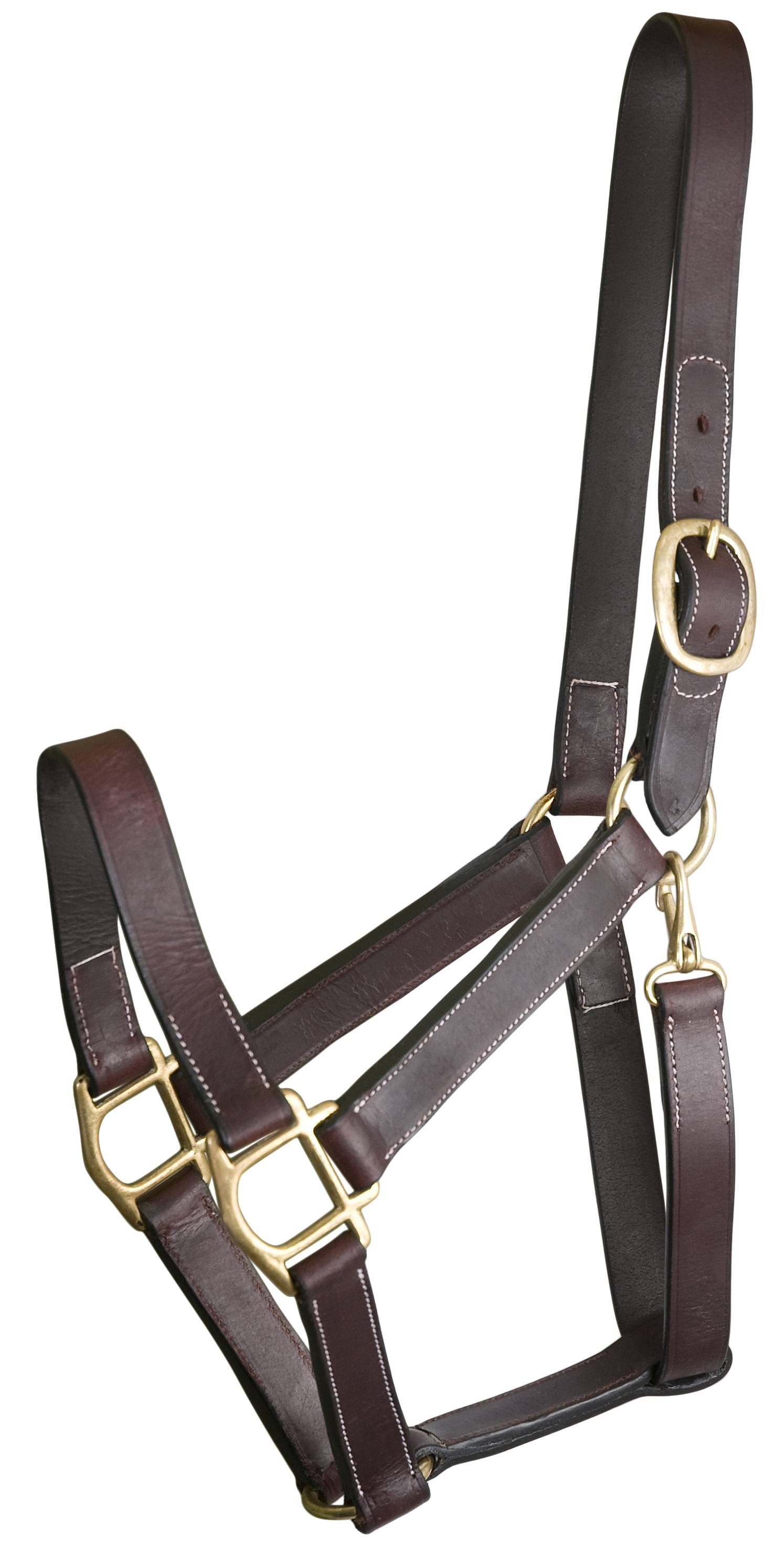 Gatsby Track Style Turnout Halter with Snap