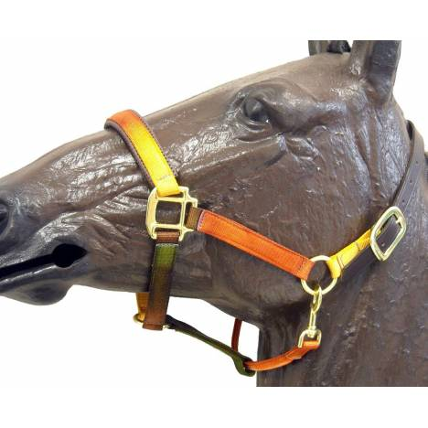 Horse Fare Earth Tone Nylon Breakaway Halter
