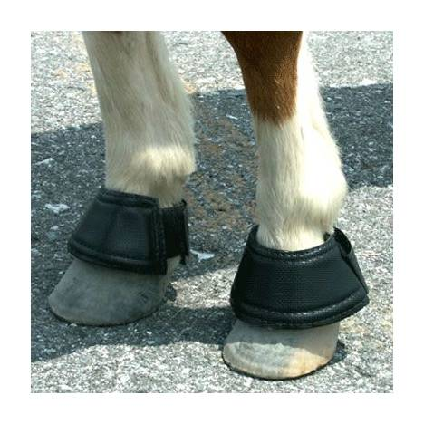 Intrepid Miniature Horse Hook & Loop Closure Neoprene Bell Boots