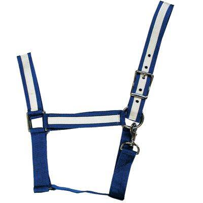 Intrepid Draft Horse Halter with Overlay