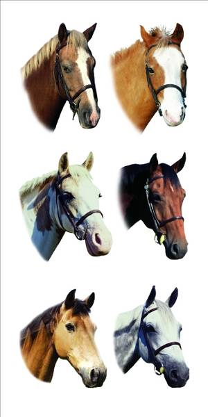 Kelley Colorful Horse Head Stickers