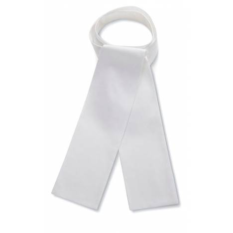 RJ Classics Essential Traditional Stock Tie