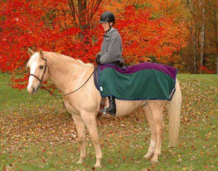 Saratoga Horseworks PolarTec 200 Riding Blanket