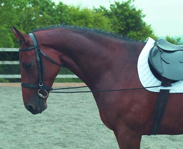 Shires Elastic Draw Rein