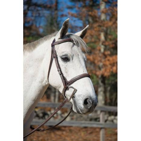 Shires Houston Snaffle Bridle