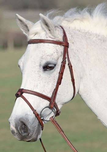 Shires Washington Snaffle Bridle