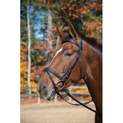 Shires Baltimore Dressage Bridle