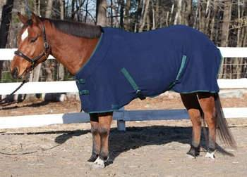 Shires Economy Fleece Blanket