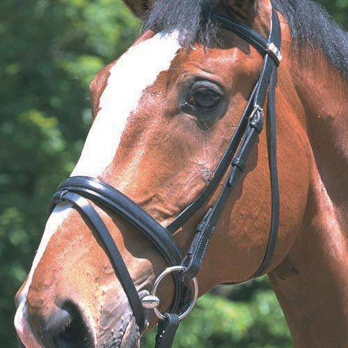 Stubben 3/4 '' Cheek Raised Flash Noseband Bridle