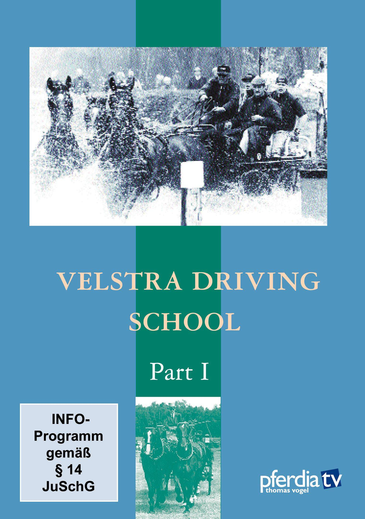 Velstra Driving Training Part 1 DVD-Tjeerd Velstra