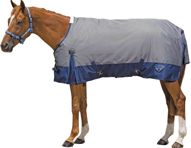 Saxon 600D Standard Neck Medium Turnout blanket
