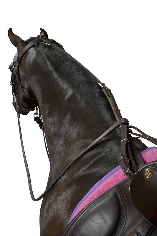 Kincade Anti-Grazing Straps