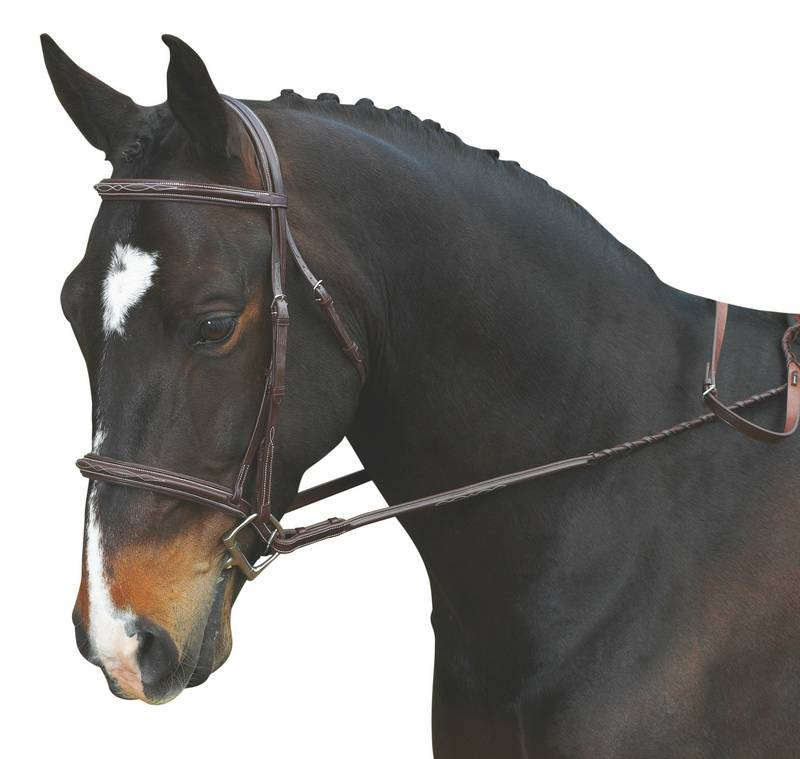 Collegiate Comfort Crown Padded Fancy Stitch Bridle