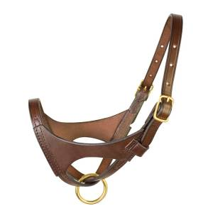 Perris Premium Leather Foal Halter