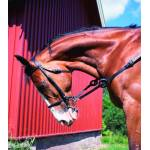 HorZe Horse Equipment