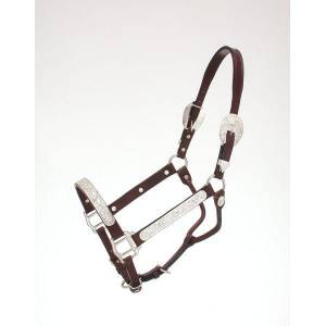 Royal King Raised Oval Show Halter