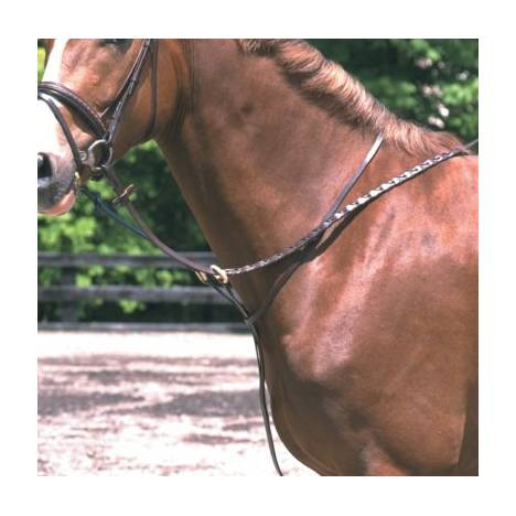 SN Standing Martingale