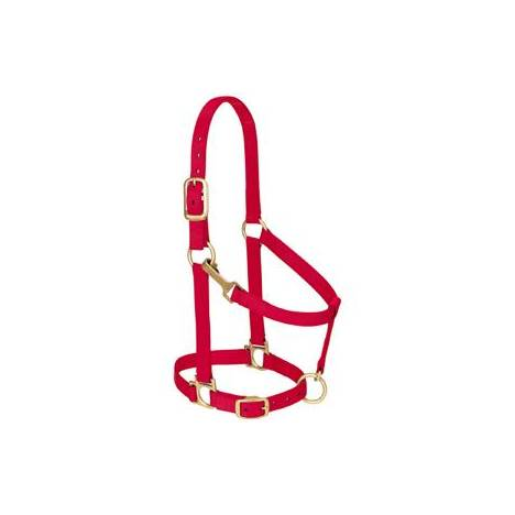 Weaver Basic Adjustable Chin Halter with Throat Snap