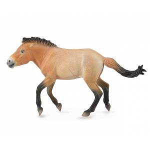 Breyer by CollectA - Przewalski Stallion