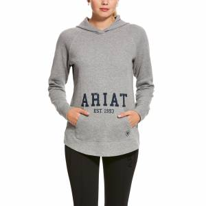 Ariat Ladies Logo Sweatshirt Heather Grey