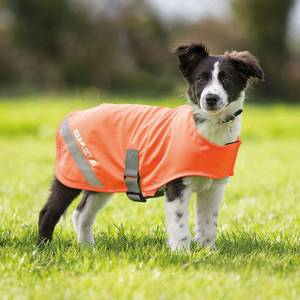 Shires Equi-Flector Dog Coat