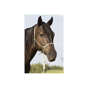 Mustang BAMTEX Rope Halter with Lead
