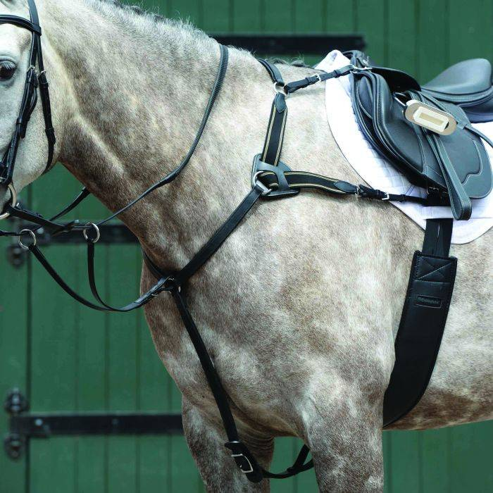 DA Brand deluxe brown leather raised breastplate running martingale English tack