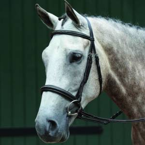 Collegiate Essential Padded Raised Fancy Stitched Cavesson Bridle