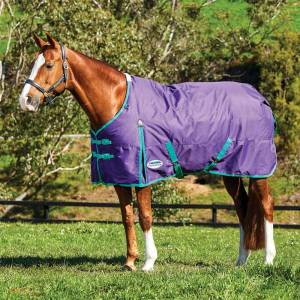 Weatherbeeta ComFiTec Essential Standard Neck Heavy Blanket