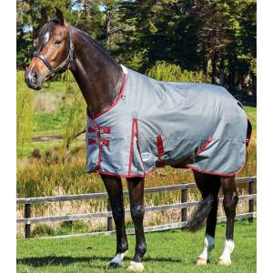 Weatherbeeta ComFiTec Plus Dynamic Standard Neck Lite Blanket