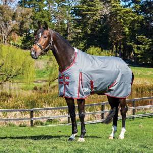 Weatherbeeta ComFiTec Plus Dynamic Standard Neck Medium Blanket