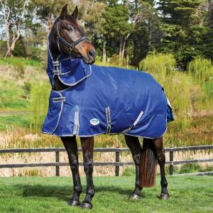 Weatherbeeta ComFiTec Premier Free II Detach-A-Neck Medium Turnout Blanket