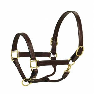HK Americana Triple Stitched Leather Halter- 1 Inch Wide