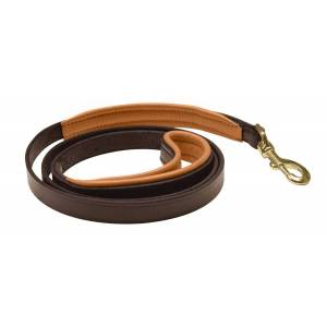 Perri's Padded Leather Dog Leash