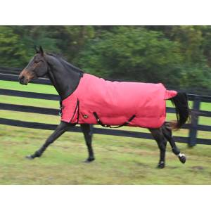Gatsby 600D Waterproof Heavyweight Turnout Blanket