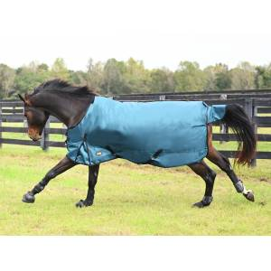 Gatsby Premium 1680D Waterproof Turnout Sheet