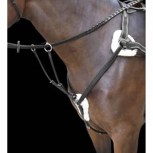 Shires Rossano Five Point Breastplate
