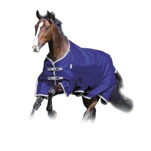 Shires Highlander Plus 100 Standard Neck