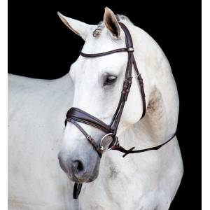 Stubben Switch Bridle