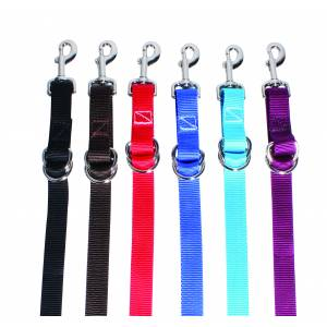 Professionals Choice Nylon Tie Down Strap