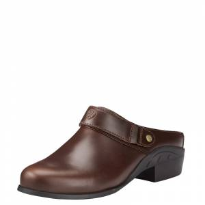 Ariat Ladies Sport Mules