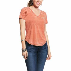 Ariat Ladies Wild Bunch Short Sleeve T-Shirt
