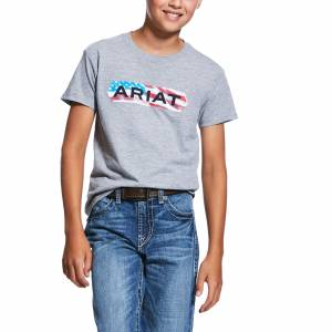 Ariat Kids Flag Tone Short Sleeve T-Shirt